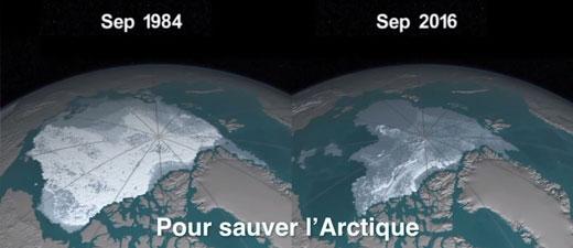 """Fonte record des glaces de l'Arctique: un """"cercle vicieux"""" alarmant pour la Terre"""